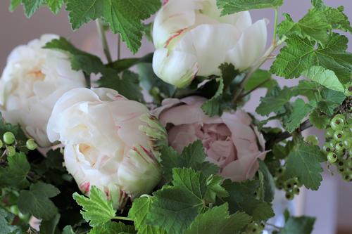 パリスタイルの花