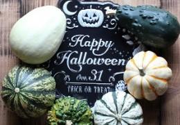 かぼちゃを使った簡単ディスプレイ