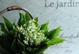 お花を長持ちさせるコツ1