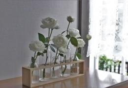 フェアビアンカを色々な花器で入れてみました。
