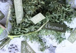 カリグラフィー&クリスマスのスワッグ1dayワークショップ
